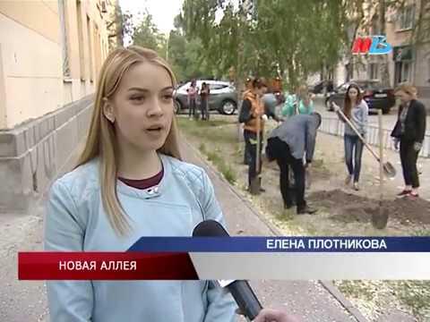Волгоградская консерватория имени Серебрякова обрастет березовой аллеей