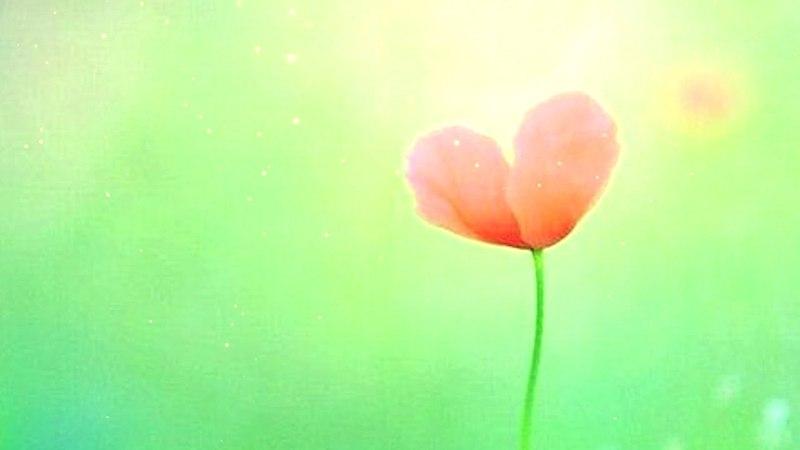 Открываем сердце для исполнения наших желаний I Мантра Богине Таре
