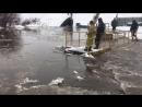 """Канал """"Голубой Дунай"""" бушует в Бийске 26.03.18"""