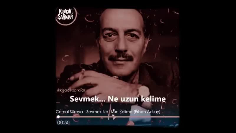 Cemal Süreyya -SEVMEK NE UZUN KELİME ( 480 X 480 ).mp4
