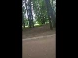 Митя Алексин - Live
