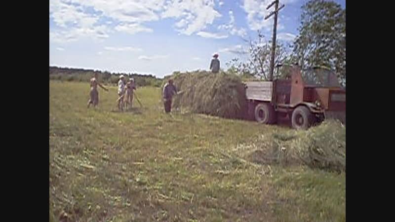 Сенокос 2007 (поле у дороги)