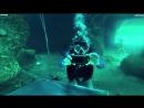 Walkie-Talkie Rugged Phone Ulefone Armor 3T Deep Water Testing(Diving).mp4