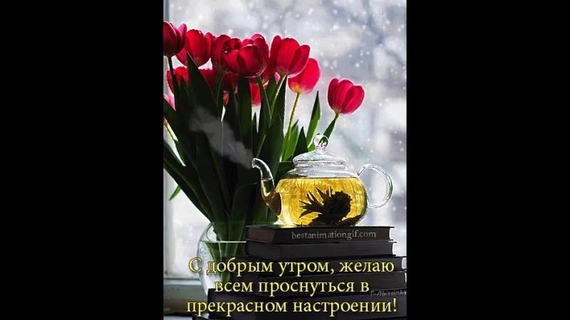 Doc168586602_491206117.mp4