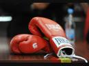 Курский боксер Гаджиев не раскрывает будущего соперника