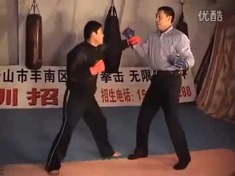 Taiji Xingyi Fighting Applications by Sanda Champion Zhang Yunxiang
