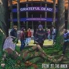 Grateful Dead альбом Dozin' At The Knick: Knickerbocker Arena