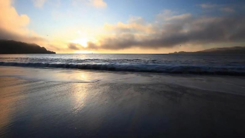 Кейко Мацуи. Цветок моря