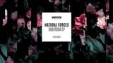 Natural Forces - Interface - DISLTD062