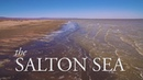 California's Skeleton In The Closet: The Salton Sea