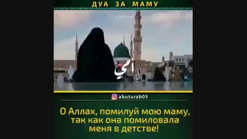 VID_20181205_202637_965.mp4