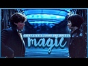 Newt tina | every little thing she does is magic 〔fantastic beasts〕