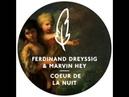 Ferdinand Dreyssig Marvin Hey - Coeur De La Nuit (Wankelmut Remix)
