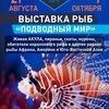 """Выставка рыб """"Подводный мир"""" Саратов"""