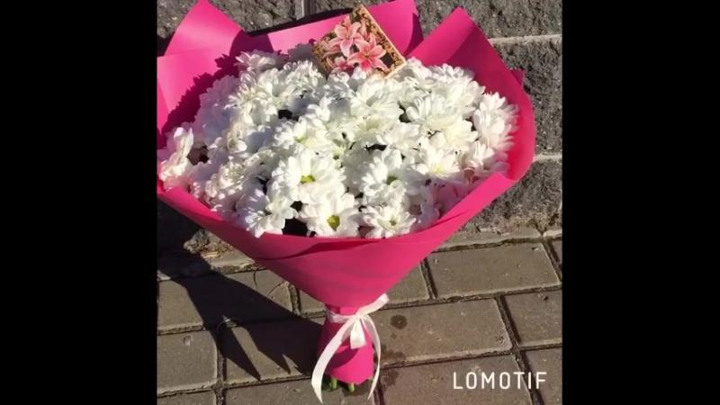 Букет из ромашковой хризантемы Цветочный магазин Farfella на Габровской 32 ТЦ Рублевский 375295455032