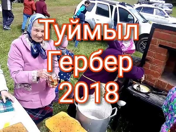 Туймыл Гербер 2018 Табани с зыретом