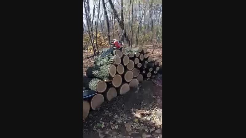 В Синельніковському районі затримали ще одну бригаду «пільщиків»
