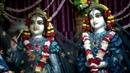 Darshan Arati of Sri Sri Radha Madhava January 23 2019