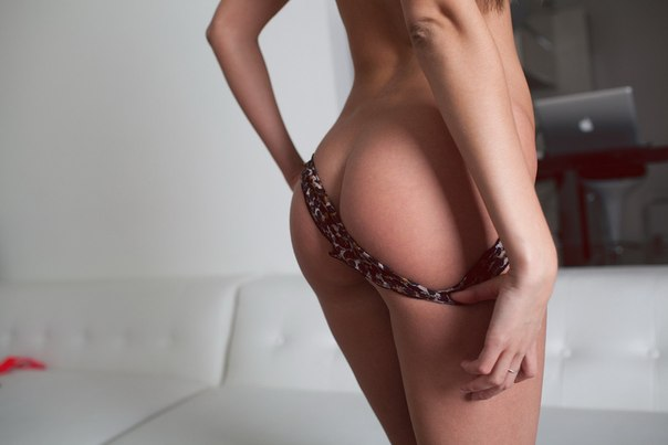 Free view of beastiality porn movies
