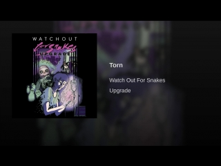 Watch Out For Snakes - Torn