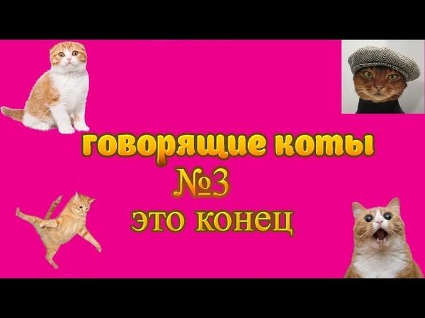 говорящие коты/№3/голодный я/мама/это конец!