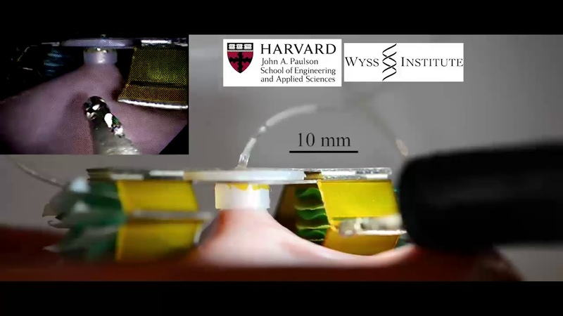 Pop Up Tissue Retraction Mechanism for Endoscopic Surgery
