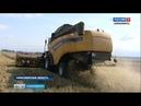 Сельхозпроизводители Новосибирской области приступили к уборочной кампании