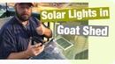 Solar Lights on the Buck Bungalow