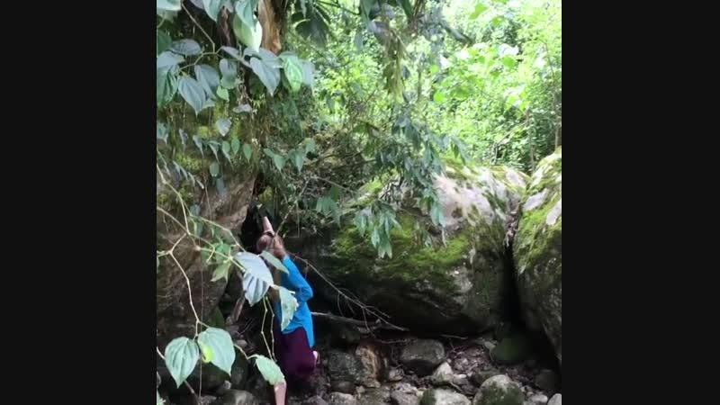 Бутан королевство СЧАСТЬЯ в Гималаях ⠀ Белая река Есть такая песня у группы ДДТ ⠀ Никогда не задумывался что белая река б