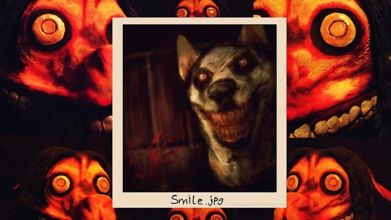 SMILE DOG 😵 РАЗОБЛАЧЕНИЕ КАРАТЕЛЕЙ ДОТКИ 😵