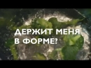 Wellness представляет батончики Нэчурал Баланс 9
