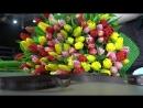 Сборка букета из 101 тюльпана