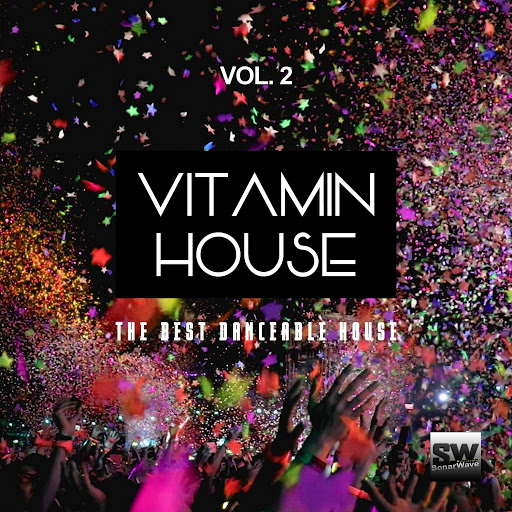 Daniele Sorrenti альбом Vitamin House, Vol. 2 (The Best Danceable House)