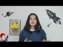 Q100 Episode Q4 Пчелопакалипсис