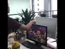 Арбузная тусовка в офисе
