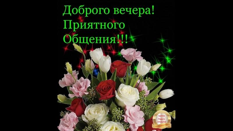 Doc397507864_494336462.mp4