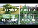 🌱4 СУПЕР способа посадки ОГУРЦОВ🌱Способы выращивания огурцов в открытом грунте