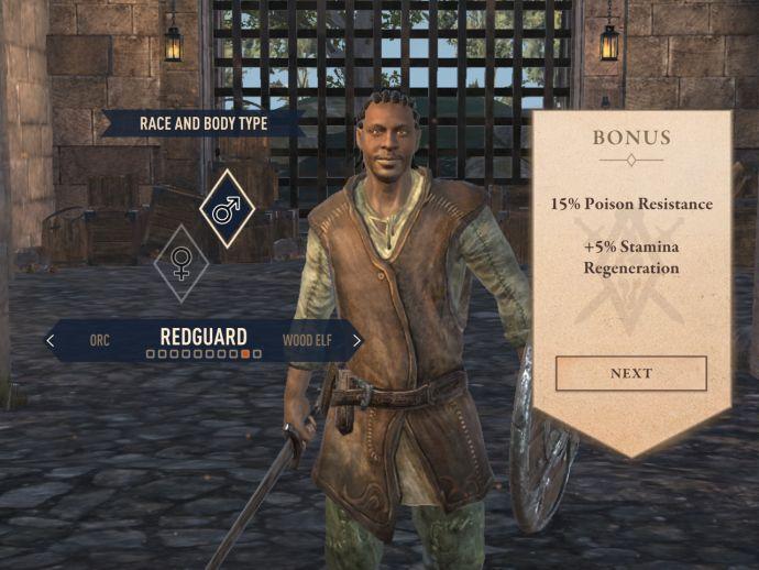 Редгарды в The Elder Scrolls Blades