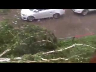 Последствия сильного ветра,
