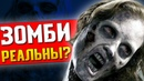 ЗОМБИ И МОЗГОВЫЕ ПАРАЗИТЫ РЕАЛЬНЫ Анализируем Resident Evil, The Last of Us и Half-Life!