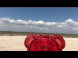 ЖЕЛЕЙНЫЙ МЕДВЕДЬ ВАЛЕРА НА МОРЕ 2108 (Новая серия)- видео для детей