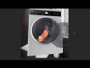 Hamster in the Washing Machine [MeMe]