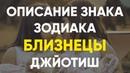 Описание Знака зодиака Близнецы Джйотиш