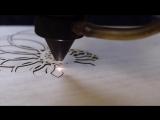 Nautilus Ornament - LaserTrees