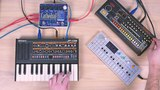 #044 Roland JP-08 TR-08 OP-1 EHX Cathedral