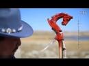 Дээд монгол ардын дуу Замбуу тивийн наран