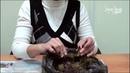 Лилии из чешуек Мастер класс Сайт Садовый мир