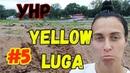 Желтая Луга 5 Лужское малибу, День города, Закон о курение