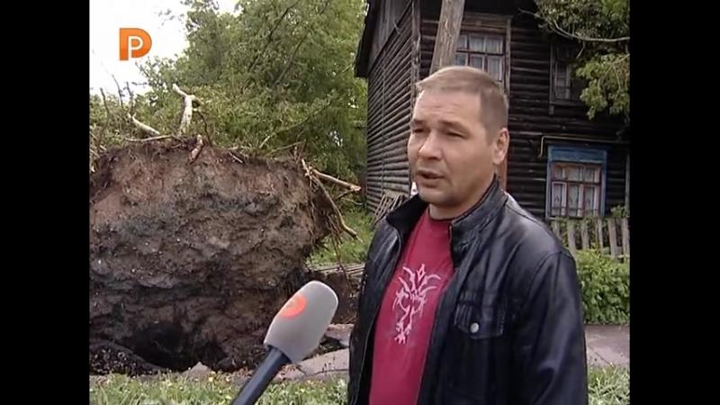 В Костроме во время урагана деревья падали на машины и дома