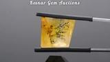 Natural Brazilian Dendritic Quartz Gemstone from KGC
